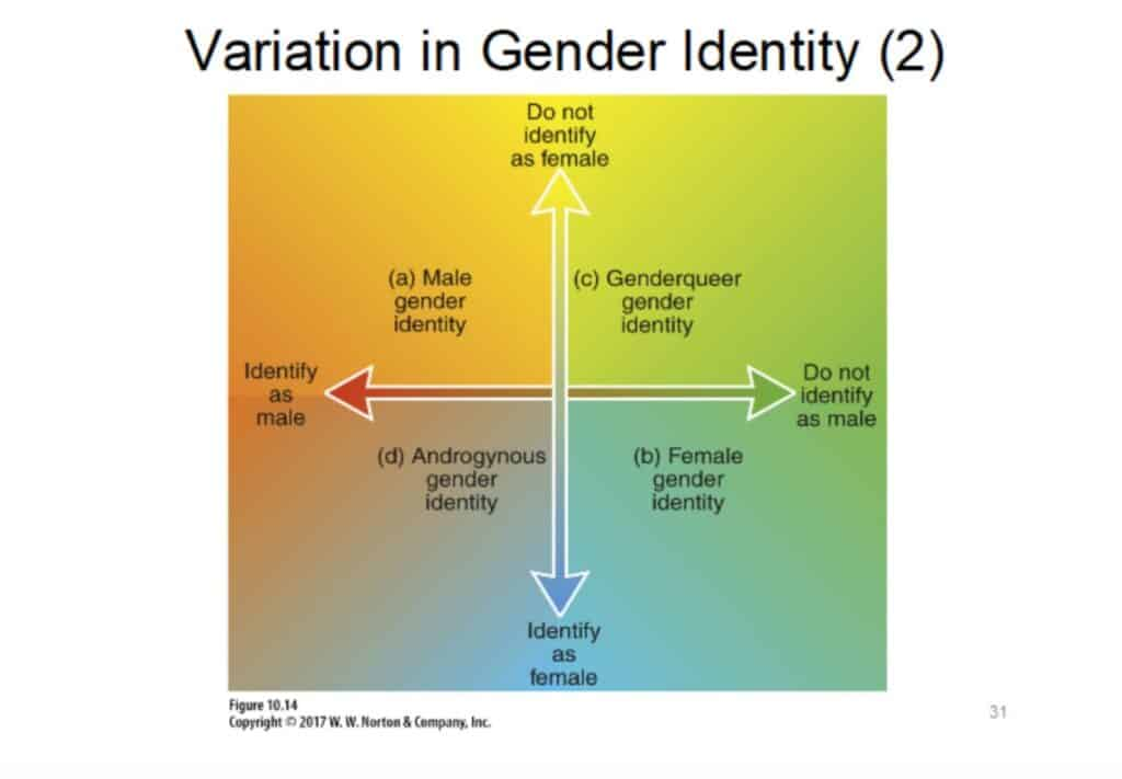 Gender identity spectrum from W.W. Norton & Company, Inc. textbook.