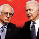 Biden and Sanders Are Both Offering Socialism.